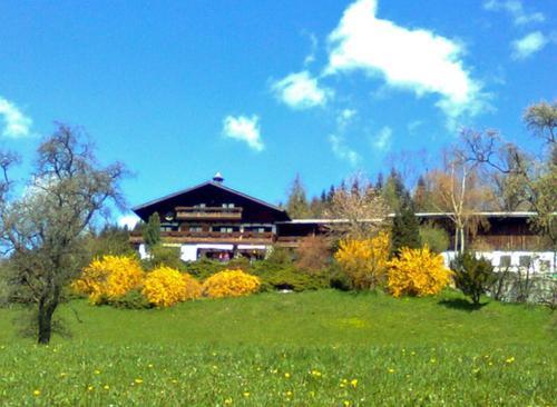 Photos de l'hôtel: Biohof Schwanser, Steinbach am Attersee