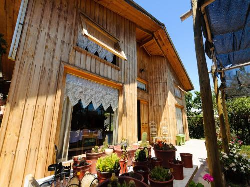 Hotel Pictures: Hostel San Felipe, San Felipe