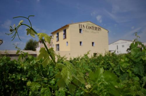Hotel Pictures: Els Canterers, Miravet