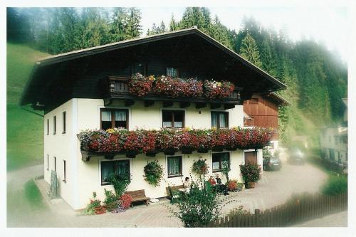 酒店图片: Appartement Haitzmann, Lungötz