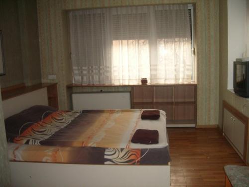 酒店图片: Maystorov Guest House, 斯维什托夫
