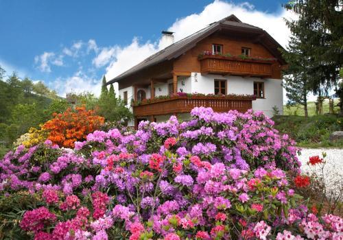 Hotellikuvia: Haus Elfi, Moosburg