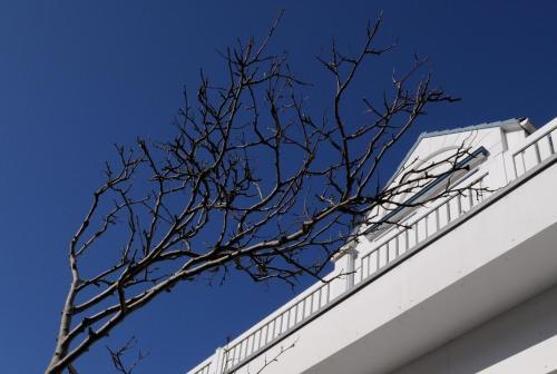 michels strandhotel germania norderney reserva tu hotel con viamichelin. Black Bedroom Furniture Sets. Home Design Ideas