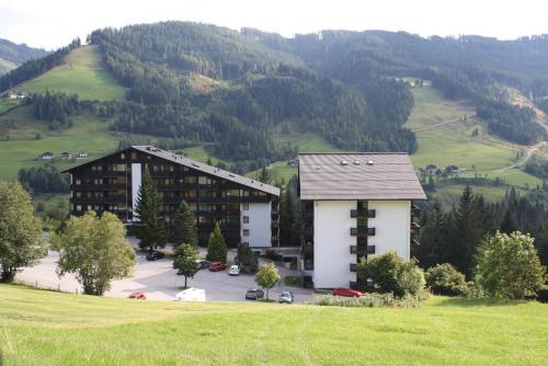 酒店图片: Mühlbach Alpendomizil II, 霍克康尼边的米尔巴赫