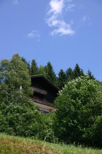 ホテル写真: Haus Ilse, バド クラインキルヒハイム