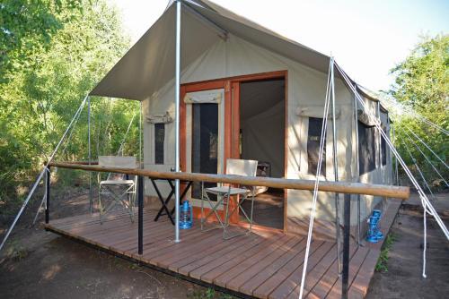 The Wild Olive Tree Camp