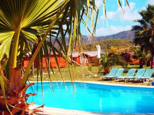 Adrenalin Village Hotel