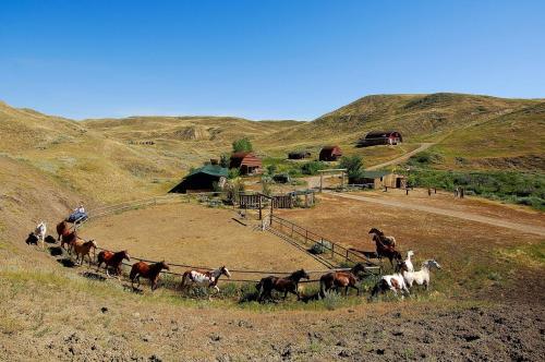 Hotel Pictures: La Reata Ranch, Kyle