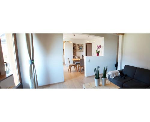 Hotellikuvia: Kitzbühel Apartments Element 3, Kitzbühel