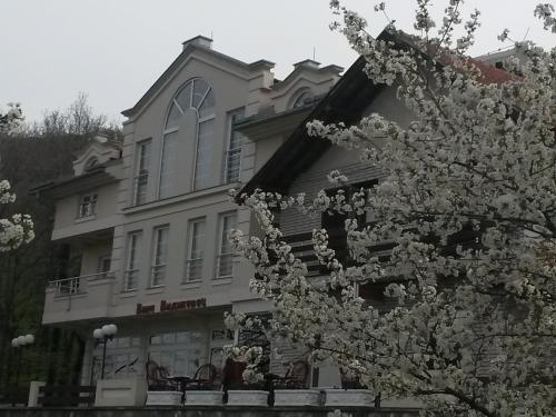 Aparthotel Vila Vidikovac