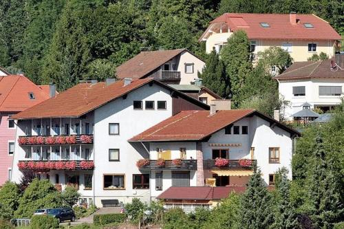 Hotel Pictures: Aparthotel Schwarzwald Panorama, Bad Wildbad