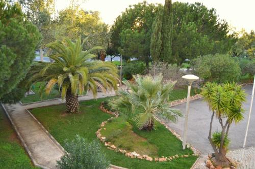 Parque das Amendoeiras
