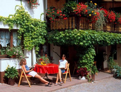 Hotel Pictures: Landpension Risch, Ilmenau