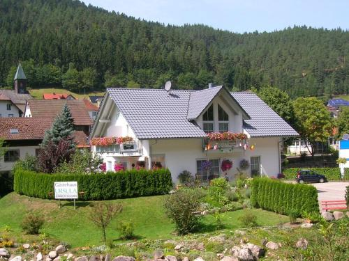Hotel Pictures: , Hornberg