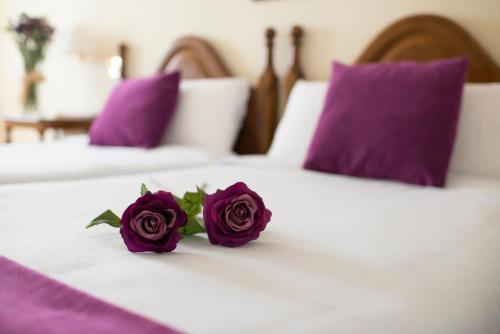Hotel Pictures: , Elciego
