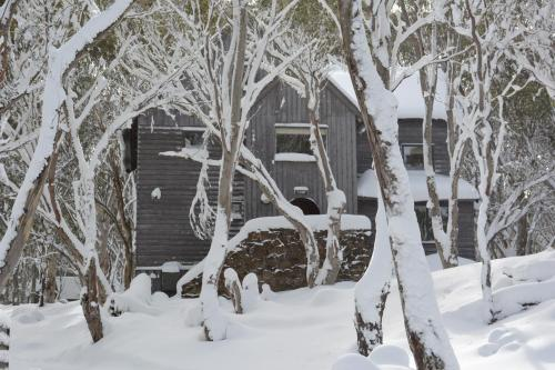 酒店图片: Tyee, 丁诺高原