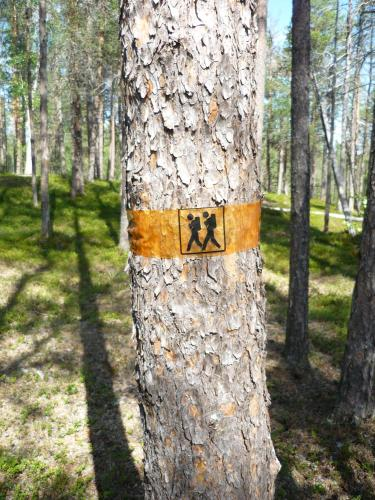 Hotel Pictures: Lemmenjoen Lumo - Nature Experience & Accommodation, Lemmenjoki