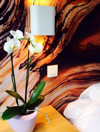 Zdjęcia hotelu: B&B Lisdodde, Lissewege