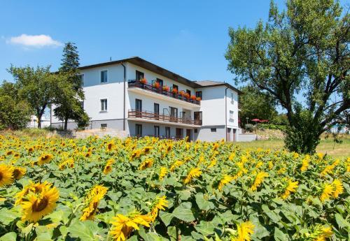 Hotelfoto's: , Breitenbrunn