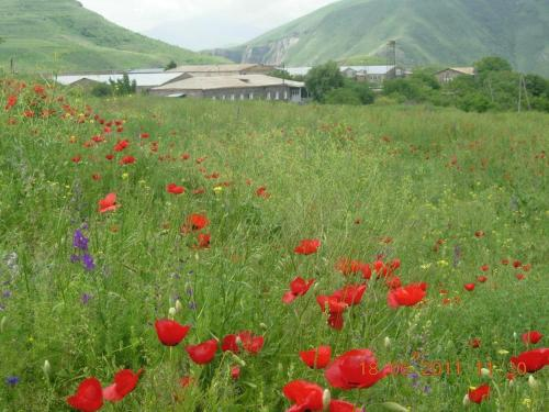 Hotel Pictures: , Sisian