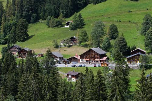 Hotel Pictures: , Les Mosses