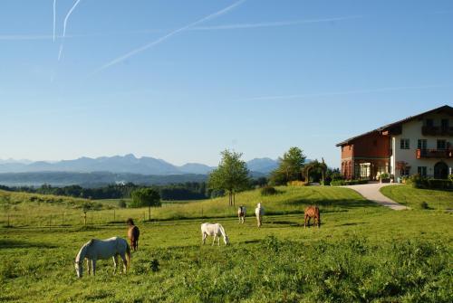 Hotel Pictures: Aschbacher Hof, Feldkirchen-Westerham