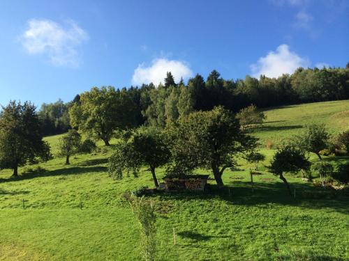 Hotel Pictures: Le Floralp, Combloux