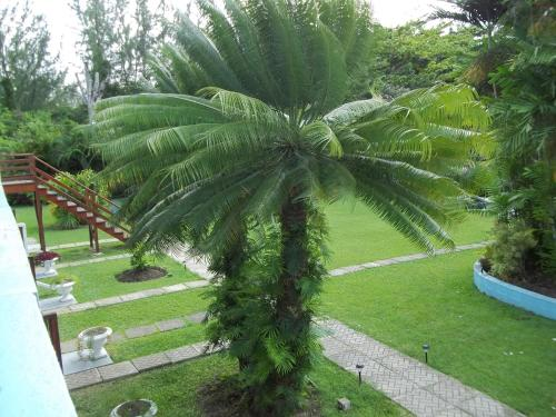 Hotelfoto's: Palm Garden Hotel Barbados, Bridgetown