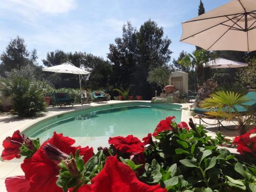Hotel Pictures: Holiday home d'Avignon et pinède, Les Angles Gard