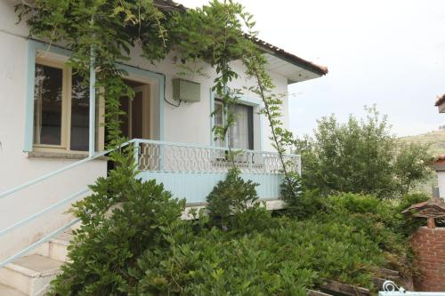 Wisteria Guest House