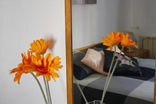 Hotel Pictures: Apartament Sant Joan, Sant Joan de Vilatorrada
