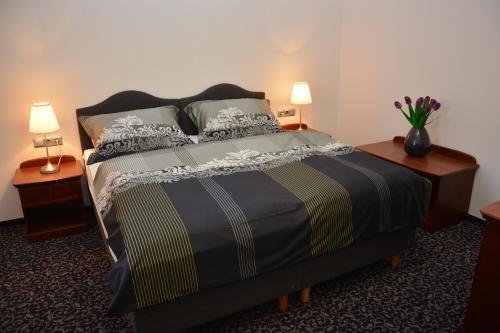 Hotel Pictures: , Velká Bystřice