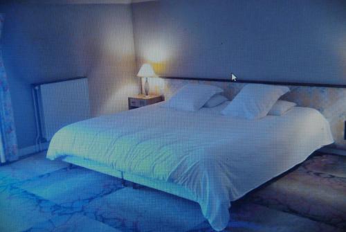Hotel Pictures: Le Petit Bistrot, Laval