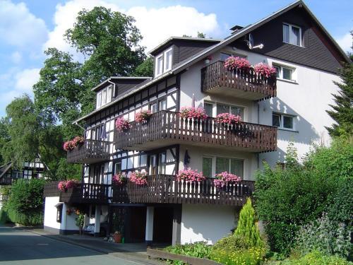 Hotel Pictures: Ferienhaus Hedrich, Assinghausen