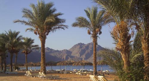 Hotel Pictures: La Playa Beach Resort Taba, Nuweiba