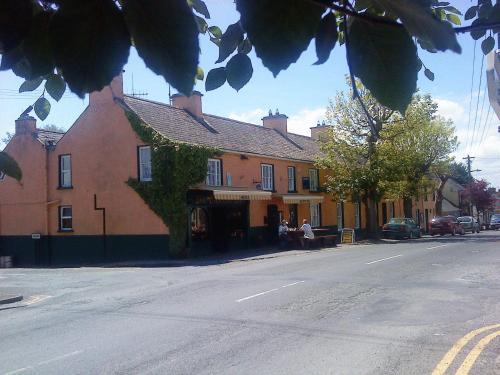 The Mountshannon Hotel