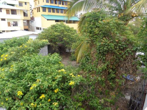 Villa Galápagos