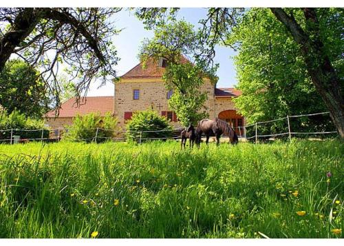 Hotel Pictures: Villa in Haute Marne, Bourbonne-les-Bains