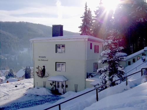 Hotel Pictures: Pension Am Waldesrand, Ilmenau