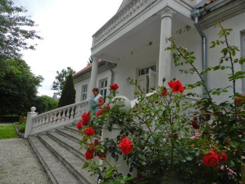 Hotel Pictures: Saare Manor Guesthouse, Saare