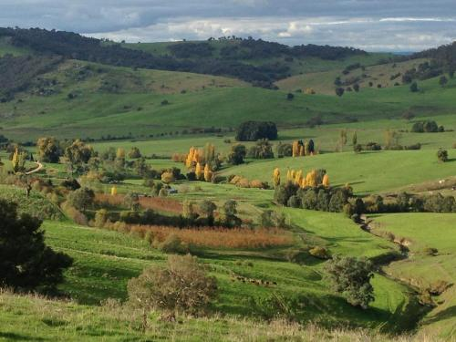 Zdjęcia hotelu: Moorallie Cottage Farmstay, Adelong