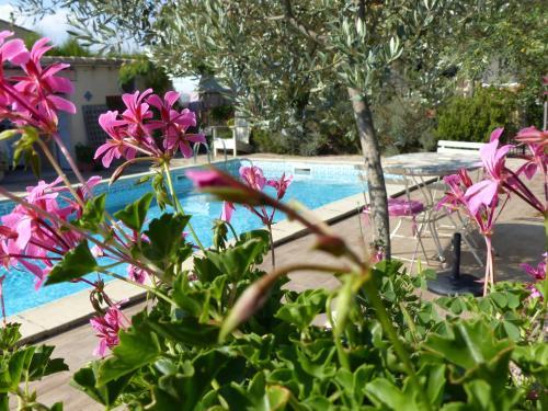 Hotel Pictures: , Villedubert
