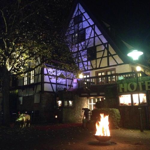 Hotel Pictures: Altes Badhaus, Eberbach