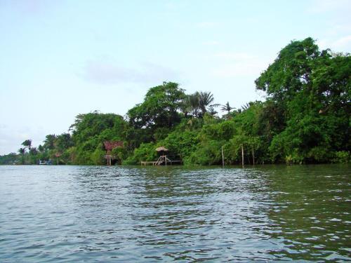 Hotel Pictures: Paracauary Eco Pousada, Soure