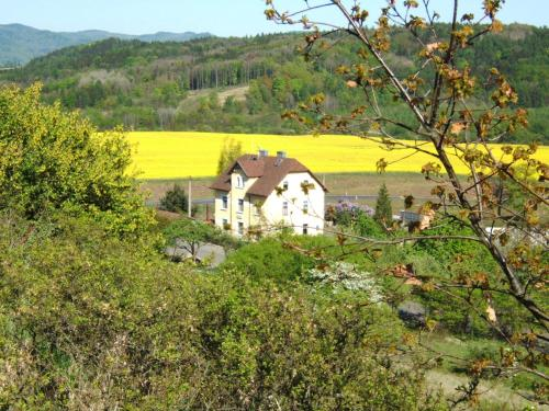 Hotel Pictures: Pension Vetrny Vrch, Ostrov