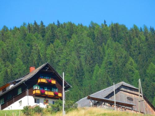 Fotografie hotelů: Pension Saupper, Mallnitz