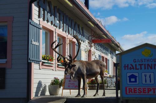 Hotel Pictures: Haltinmaa Cottages, Kilpisjärvi