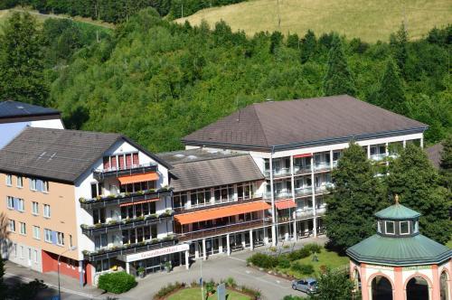 Hotel Pictures: GesundheitsHotel Das Bad Peterstal, Bad Peterstal-Griesbach