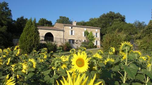 Hotel Pictures: , Saint-Martin-Lalande