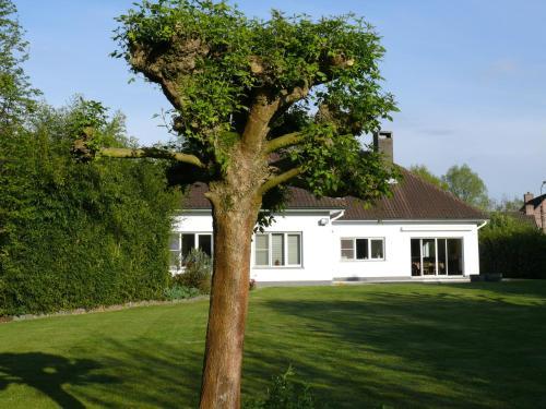 Fotos del hotel: Halte 10 Apartment, Heusden